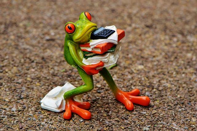 frog-budget